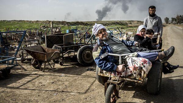 Alessandro Rota, Operacja w Mosulu. Irak - Sputnik Polska