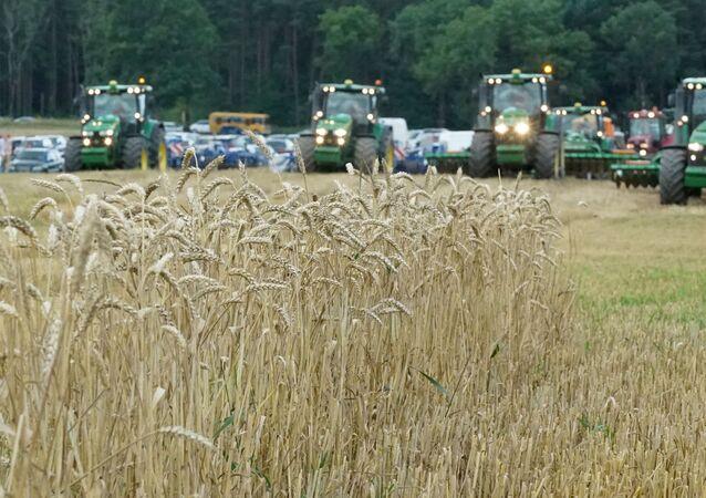 Festiwal maszyn rolniczych w Rosji