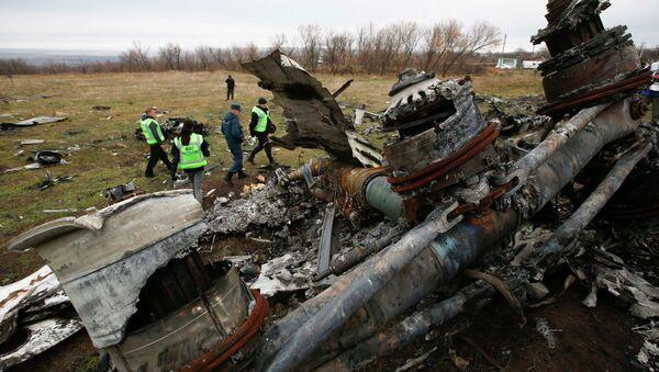 Wrak Boeinga MH17 - Sputnik Polska