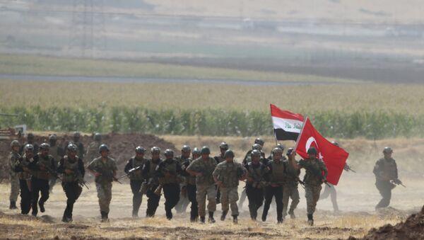 Wojska Turcji i Iraku - Sputnik Polska