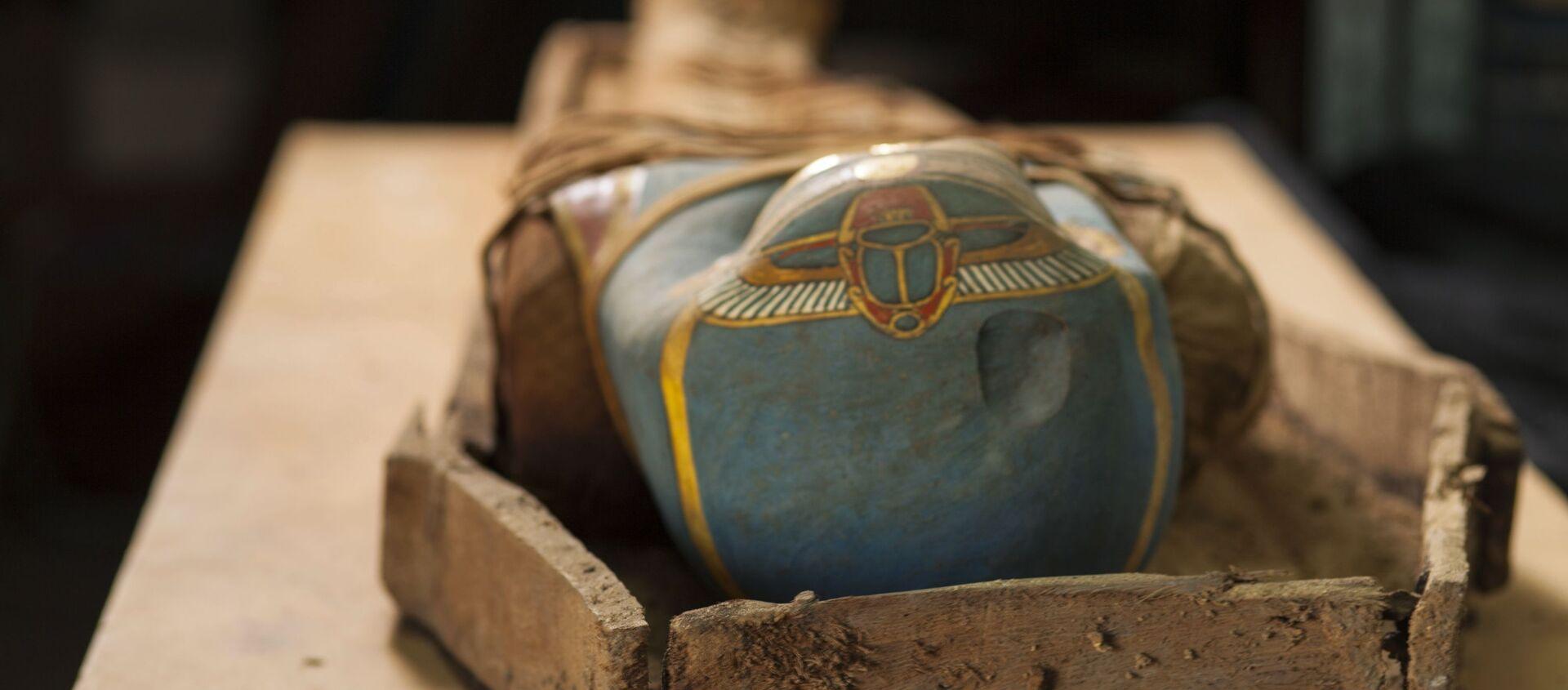 Egipska mumia - Sputnik Polska, 1920, 08.02.2021