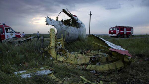 Katastrofa MH17 - Sputnik Polska