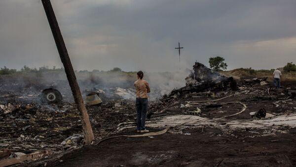 Miejsce katastrofy malezyjskiego boeinga w obwodzie donieckim - Sputnik Polska