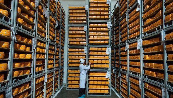 Krążki sera na składze w obwodzie czernichowskim Ukrainy - Sputnik Polska