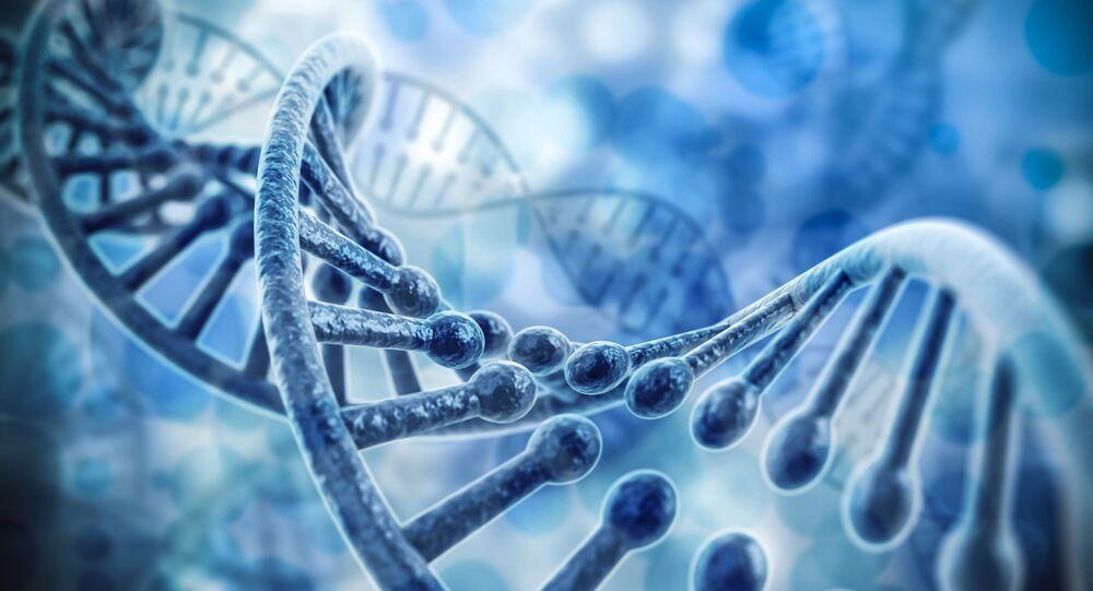 Model komputerowy DNA