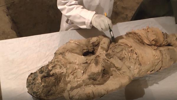 W mieście Luksor (Egipt) znaleziono dwa grobowce sprzed około 3500 lat - Sputnik Polska