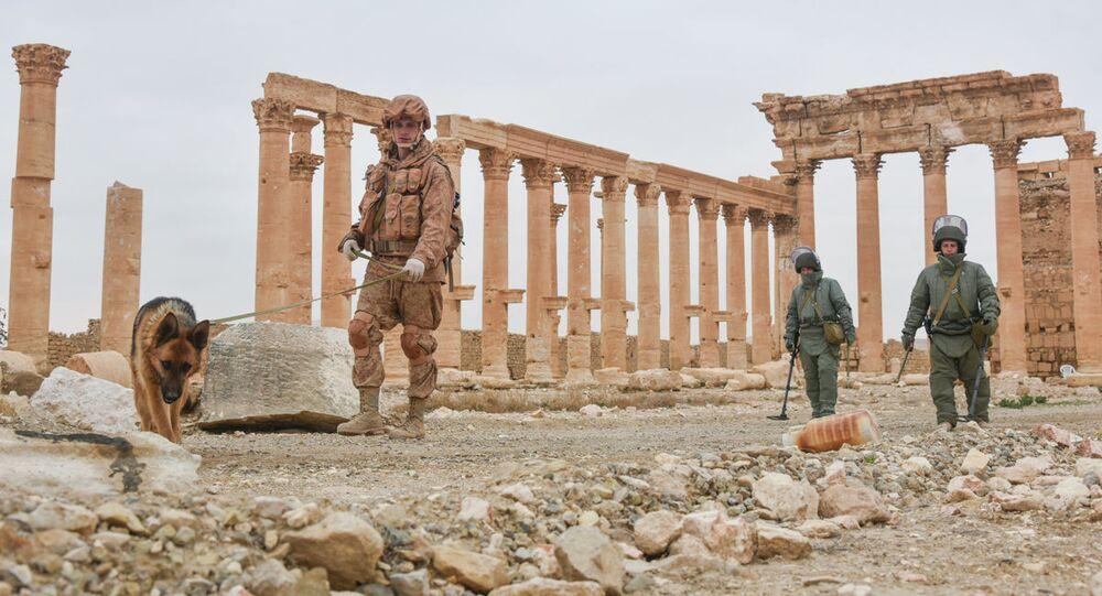 Rosyjscy saperzy rozminowują historyczną Palmirę i osiedla mieszkalne