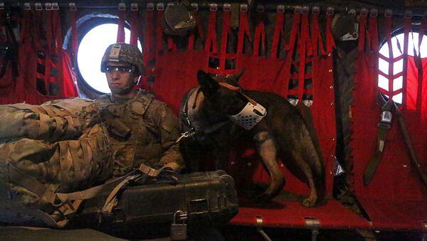 Amerykański żołnierz na pokładzie helikoptera nad Irakiem - Sputnik Polska