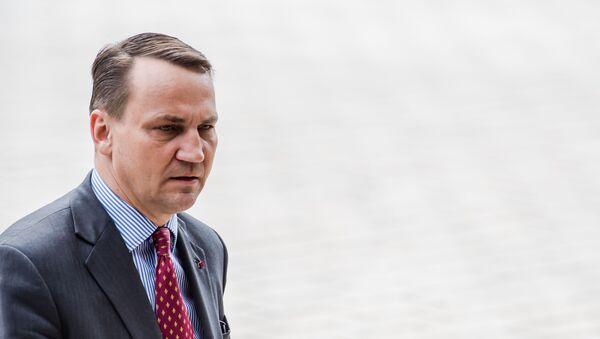 Były szef dyplomacji Radosław Sikorski - Sputnik Polska