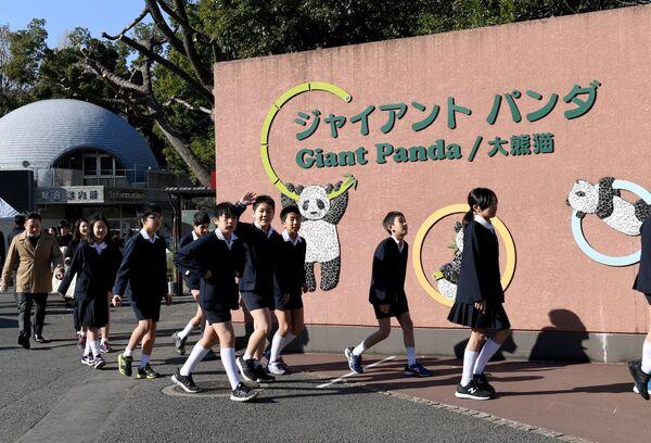 18 grudnia odbył się pokaz medialny pandy, na którym byli obecni japońscy uczniowie i dziennikarze. - Sputnik Polska