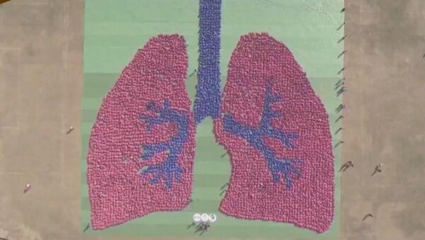 Gigantyczny wizerunek ludzkich płuc - Sputnik Polska