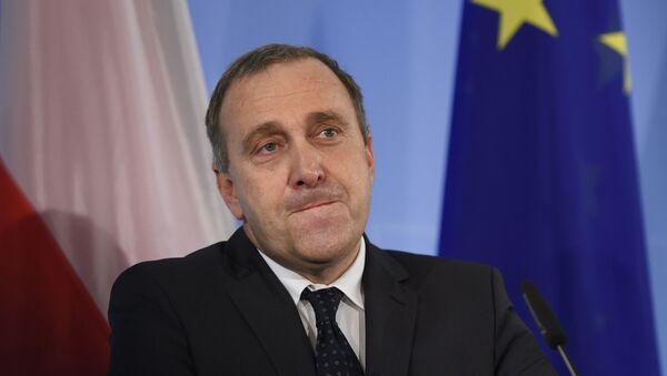 Grzegorz Schetyna, polski minister spraw zagranicznych - Sputnik Polska
