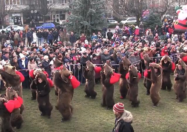 Parada Niedźwiedzi