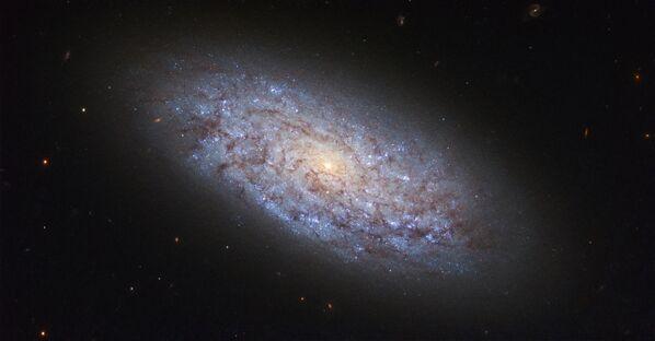 Galaktyka NGC 5949 w gwiazdozbiorze Smoka łamie prawa występowania ciemnej materii. - Sputnik Polska