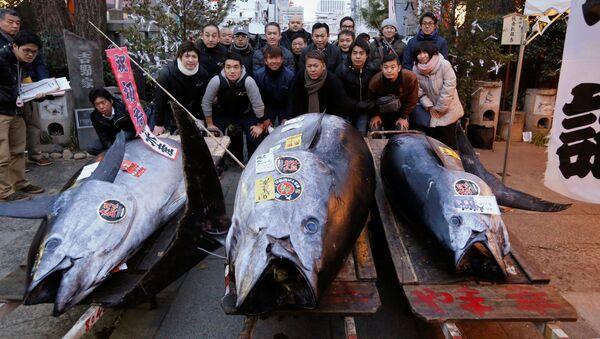 Targ rybny Tsukiji w Tokio - Sputnik Polska