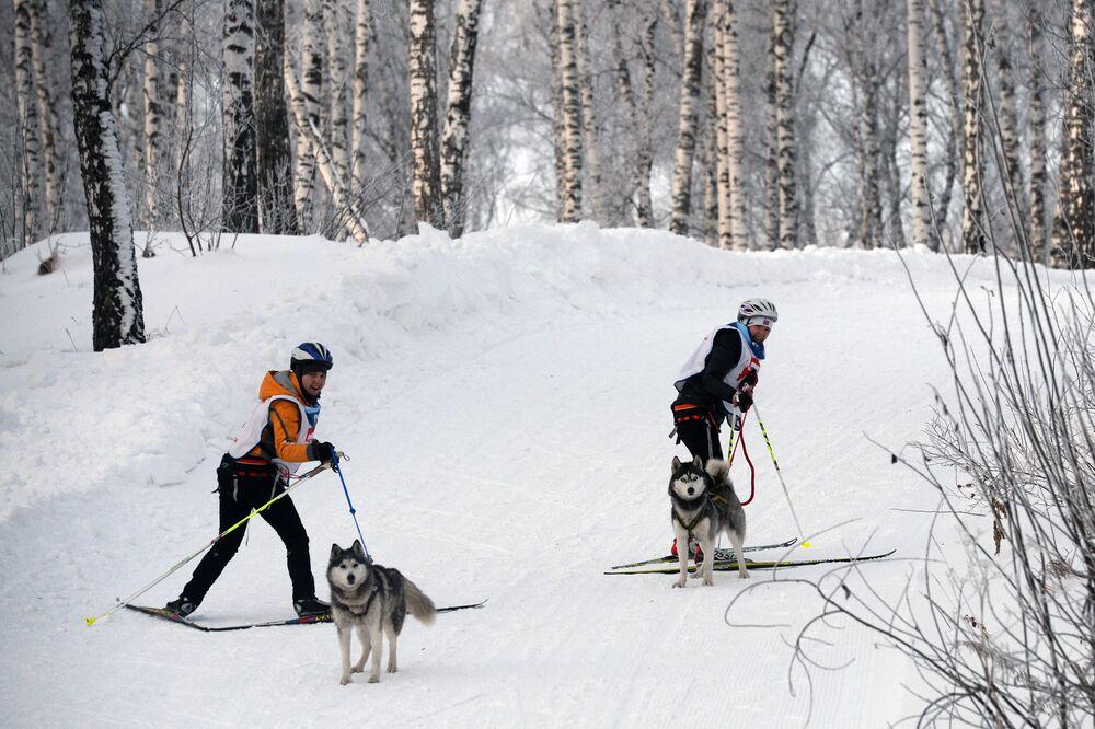 Uczestnicy wyścigu ścigali się na trasie sportowej ze stromymi górkami i wykazali się mistrzostwem w kierowania nartami i saniami.