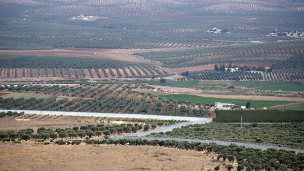 Widok na syryjskie miasto Afrin na granicy z Turcją - Sputnik Polska