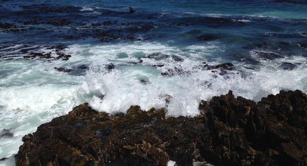 Wybrzeże Afryki Południowej