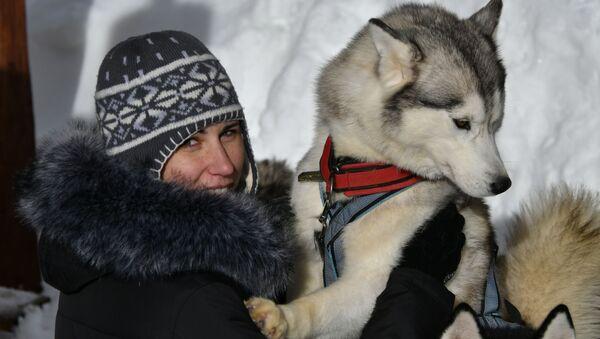Wyścigi psich zaprzęgów Lagonaki 2018 w Kraju Krasnodarskim - Sputnik Polska