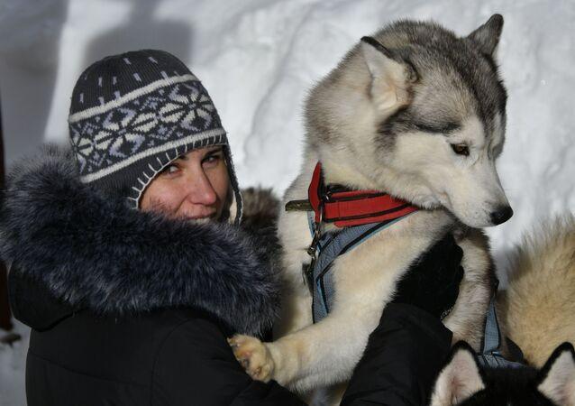 Wyścigi psich zaprzęgów Lagonaki 2018 w Kraju Krasnodarskim