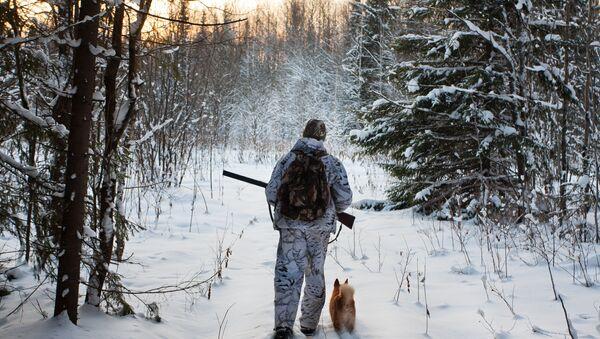 Myśliwy w zimowym lesie - Sputnik Polska