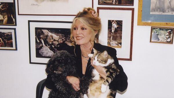 Brigitte Bardot - Sputnik Polska