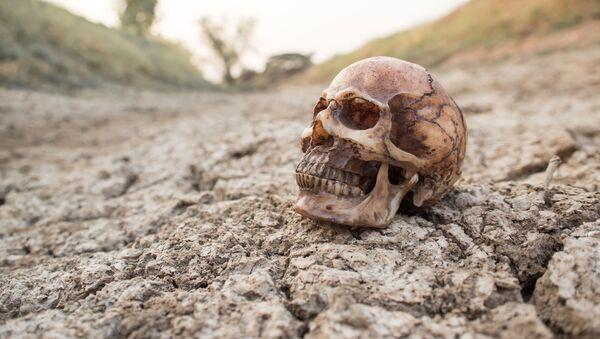 Ludzka czaszka na zaschniętej ziemi - Sputnik Polska