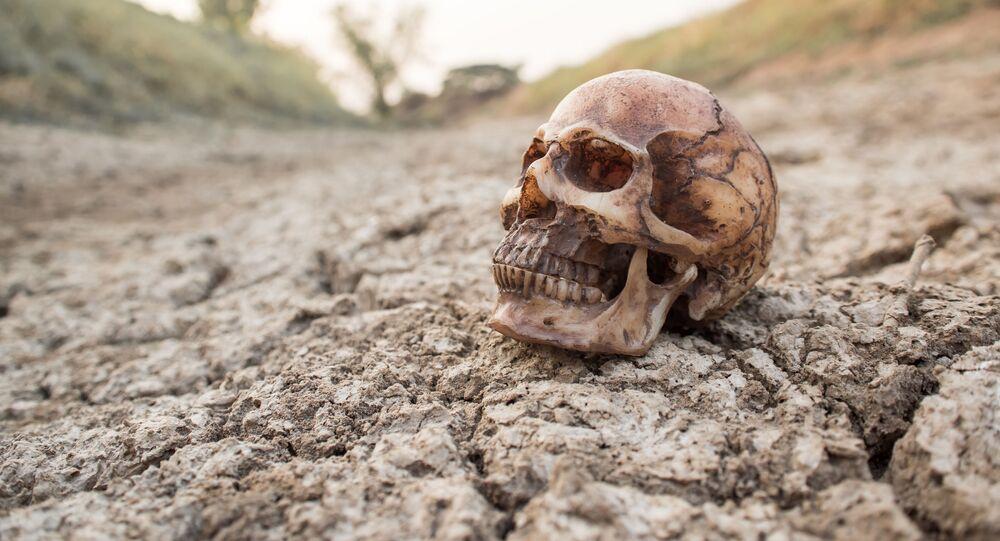 Ludzka czaszka na zaschniętej ziemi