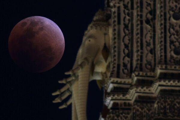 Krwawy Księżyc w Bangkoku, 31 stycznia 2018 - Sputnik Polska
