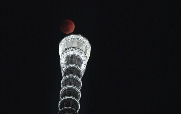 Krwawy Księżyc nad Tokajską wieżą Sky Tree, Japonia - Sputnik Polska
