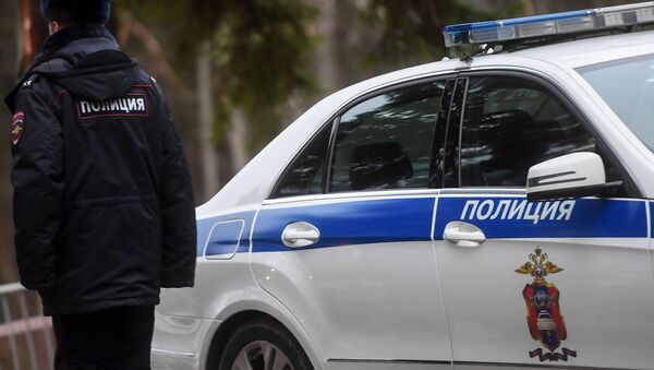 Oficer policji przy radiowozie - Sputnik Polska