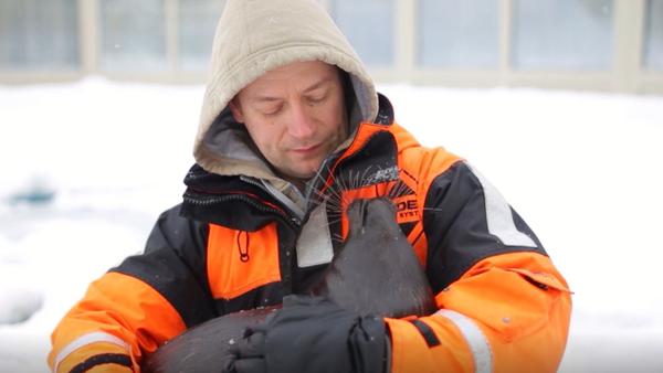 Młode nerpy, Kroszyk, zostało  uratowane przez ludzi - Sputnik Polska