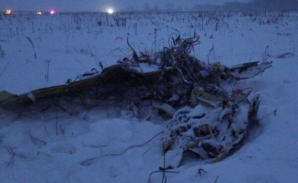 Części samolotu An-148 Saratowskich linii lotniczych pod Moskwą - Sputnik Polska