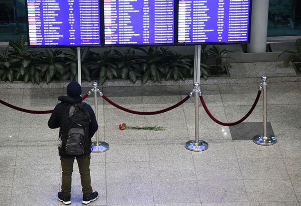 Pasażer przy tablicy informacionnnej na lotnisku Moskwa-Domodiedowo - Sputnik Polska