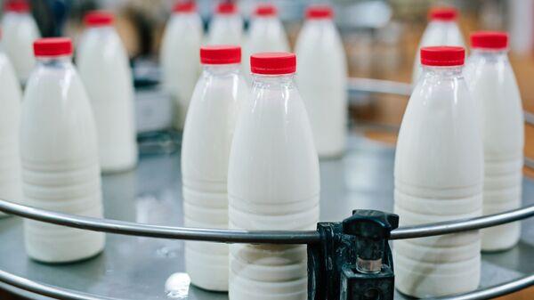 Produkty mleczne. Zdjęcie archiwalne - Sputnik Polska