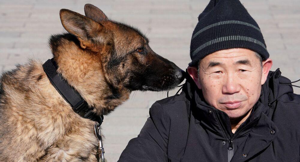 Szkolenie psów obronnych w Pekinie