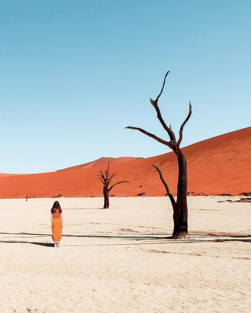 Przyroda Namibii dla projektu Jak daleko od domu