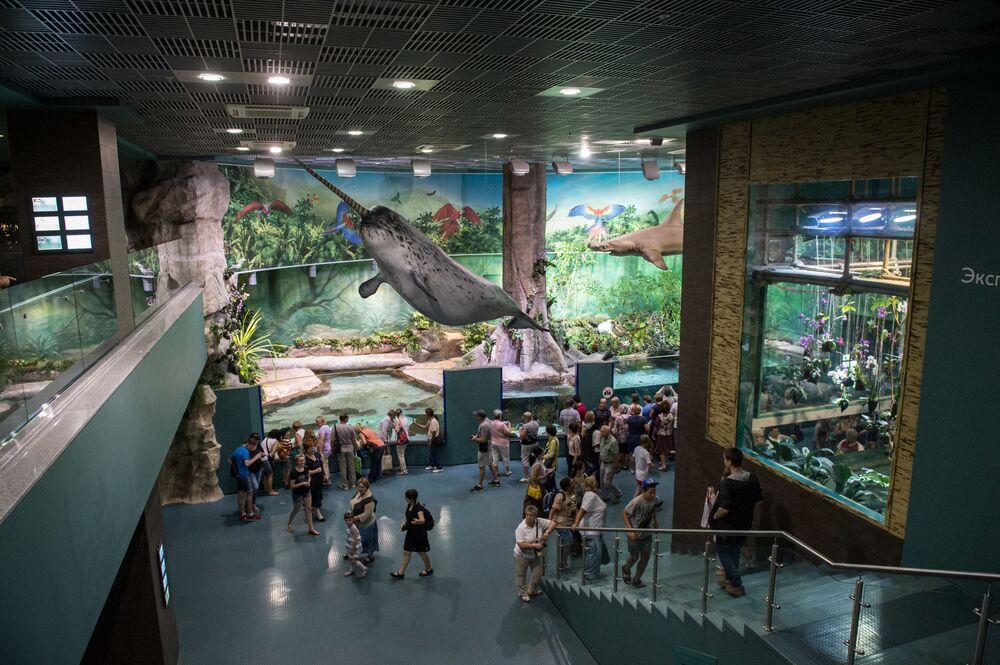 Goście w największym w Europie centrum oceanografii i biologii morskiej Moskwarium na WDNCh