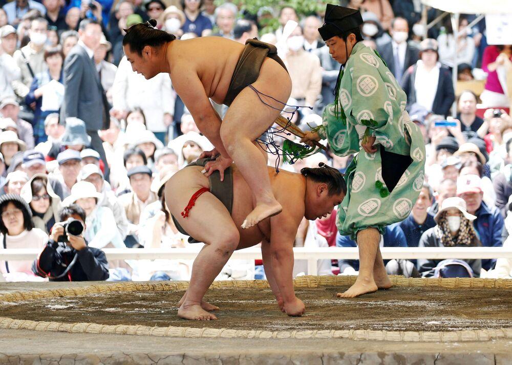 Sumoiści podczas walki pokazowej na turnieju Sumo w świątyni Shinto w Yasukuni w Tokio