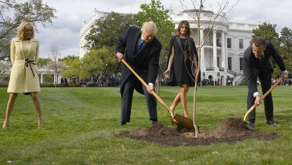 Prezydent USA Donald Trump z żoną Melanią i prezydent Francji Emmanuel Macron z żoną Brigitte sadzą drzewo przed Białym Domem - Sputnik Polska
