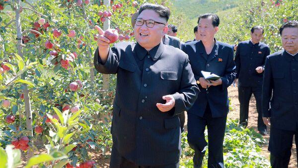 Przywódca KRLD Kim Dzong Un - Sputnik Polska