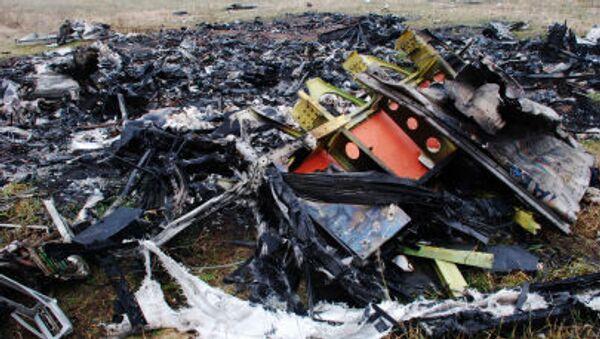 Miejsce katastrofy malezyjskiego Boeinga 777 w okolicach wsi Grabowo w obwodzie donieckim - Sputnik Polska
