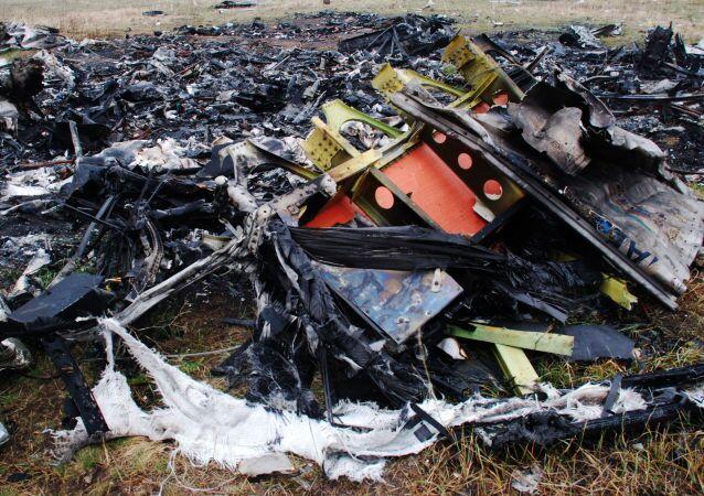 Miejsce katastrofy malezyjskiego Boeinga 777 w okolicach wsi Grabowo w obwodzie donieckim