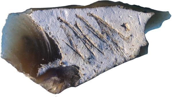 Grawerowanie na kamiennym narzędziu z epoki paleolitu znalezionym na neandertalskim obozowisku Kiik-Koba - Sputnik Polska