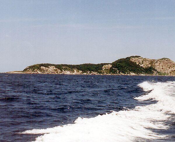 Wyspa Węży w Brazylii - Sputnik Polska
