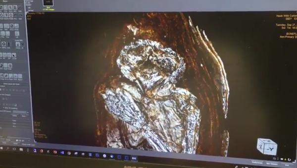Zdjęcie mumii noworodka ze Starożytnego Egiptu - Sputnik Polska