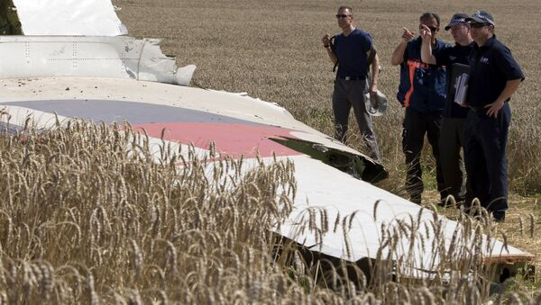 Niemieccy eksperci na miejscu katastrofy MH17 - Sputnik Polska
