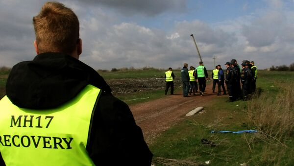 Eksperci z Holandii z Malezji na miejscu katastrofy Boeinga w obwodzie donieckim - Sputnik Polska