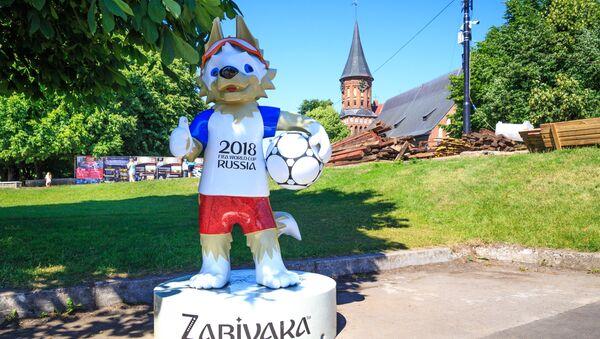 Wilk Zabiwaka z Katedrą Matki Bożej i św. Wojciecha w tle - Sputnik Polska