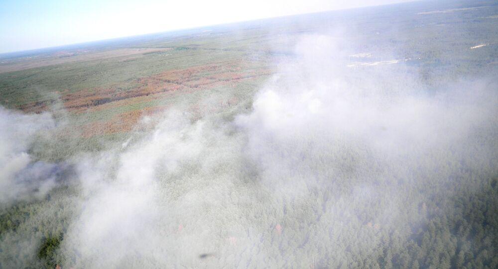 Pożar lasu w Czarnobylskiej Strefie Wykluczenia